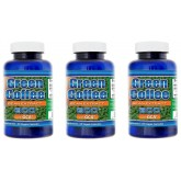 Green Coffee Bean Extract - 3 Month
